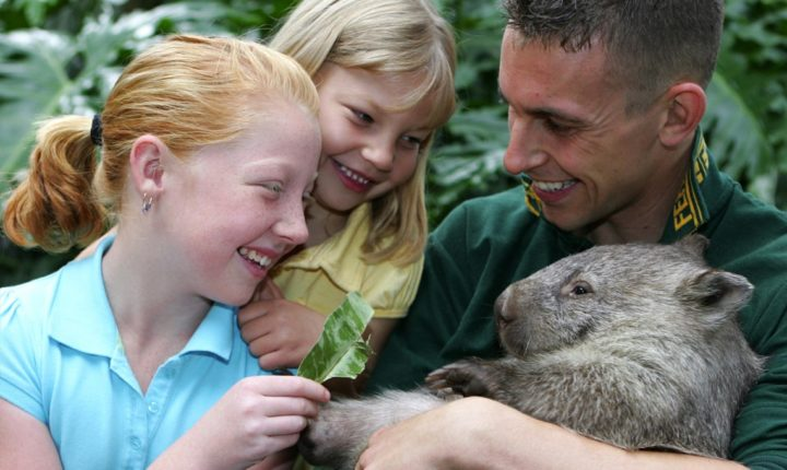 Featherdale Wildlife Park Attraction - Near Alpha Hotel Eastern Creek